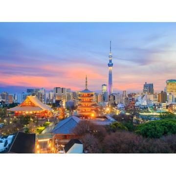 5D4N Japan Delight