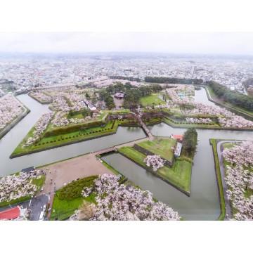 7D5N Hokkaido + Hakodate