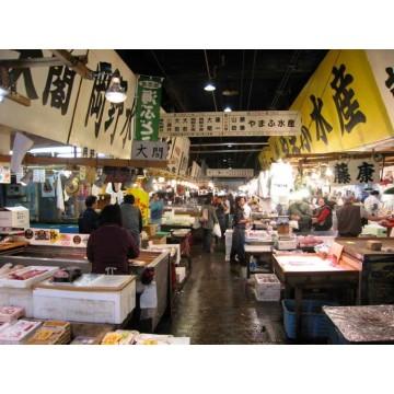 7D5N OSAKA/KYOTO/UNIVERSAL STUDIOS JAPAN/HAKONE/TOKYO